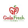 Gala Fresh