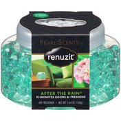 Renuzit Pearl Scents After the Rain Air Freshener