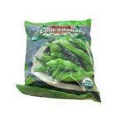 Asian Taste Organic Edamame Soybeans