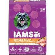 IAMS ProActive Health Mature Adult Super Premium Dog Food