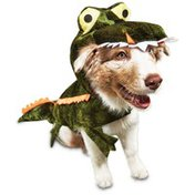 Medium Halloween Gator Dog Costume