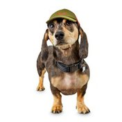 Reddy Ice Extra Small to Small Pet Trucker Hat