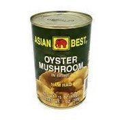 Asian Best Oyster Mushroom