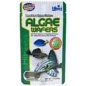 Hikari Miso Tropical Algae Wafers
