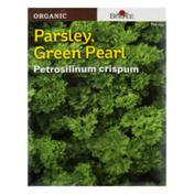 Burpee Parsley, Green Pearl