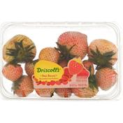 Driscoll's Strawberries Fraises