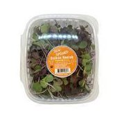 New Natives Organic Daikon Radish Sprouts
