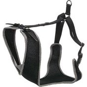 Petco Medium Seatbelt Harness Gray