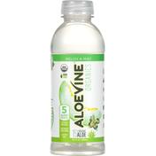 Aloevine Aloe Beverage, Melon & Mint