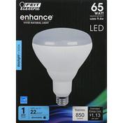 Feit Electric Light Bulb, LED, Daylight, 9.4 Watts
