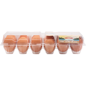 Land O Lakes Eggs, Cage Free, Brown, Large