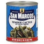 San Marcos Cactus, Tender, in Light Brine