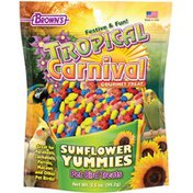 Brown's Tropical Carnival Gourmet Treats Sunflower Yummies Treats for Parakeets, Cockatiels, Parrots, Macaws & Other Pet Birds