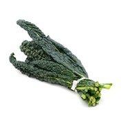 Lacinato (Dinosaur) Kale Bunch