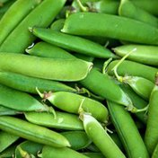Genesis Sprouts Organic Green Pea Shoots
