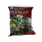 Eat Smart Stir Fry Kit, Kale & Red Chard