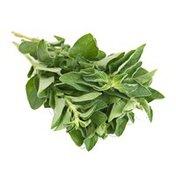 Organic Organic Herb Oregano Bunch