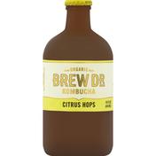 Brew Dr. Kombucha Citrus Hops Kombucha