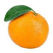 Mandarin Oranges in Lite Syrup