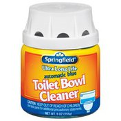 Springfield Automatic Blue Toilet Bowl Cleaner