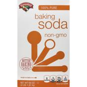Hannaford Baking Soda