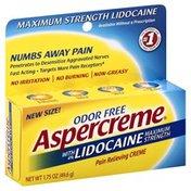 Aspercreme Pain Relief Creme, Maximum Strength