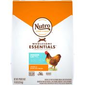 NUTRO Indoor Cat Chicken & Brown Rice Recipe Adult Cat Food