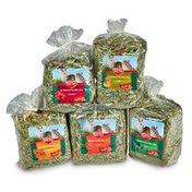 Kaytee All Natural Timothy Hay Variety Pack