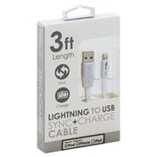 Gabba Goods Sync + Charge Cable, Lightning to USB, 3 Foot Length