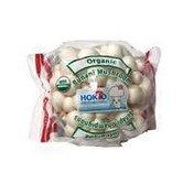Hokto Kinoko Company Organic Bunapi Mushroom