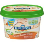 Blue Bunny Caramel Praline Crunch Frozen Yogurt