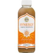 GTs Synergy Organic Kombucha Ginger Chia