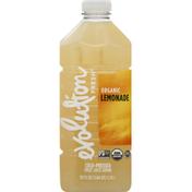 Evolution Fresh Cold-Pressed Refresh Organic Lemonade