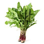 Red Dandelion Greens Bunch