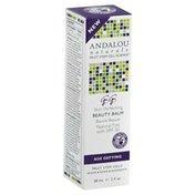 Andalou Naturals Skin Perfecting Beauty Balm, Box