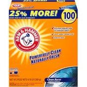 Arm & Hammer Clean Burst 100 Loads Powder Laundry Detergent