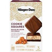 Haagen-Dazs Dulce de Leche Ice Cream Cookie Squares