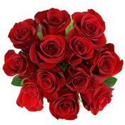 Debi Lilly Red Roses