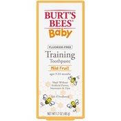 Burt's Bees Training Toothpaste, Fluoride Free, Mild Fruit
