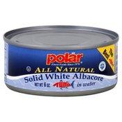 Polar Solid White Albacore