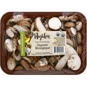 Highline Mushrooms Mushrooms, Organic, Mini Bella Sliced