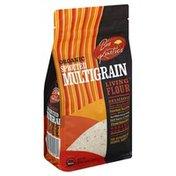 Bio Kinetics Flour, Living, Organic, Sprouted Multigrain