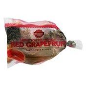 Wellsley Farms Grapefruit Bag