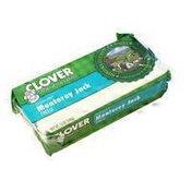 Clover Stornetta Monterey Jack Cheese