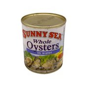 Sunny Sea Oysters In Water Salt Added