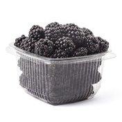 Fresh Kampo Organic Blackberries