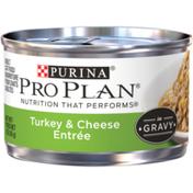 Purina Pro Plan Gravy Wet Cat Food, Turkey & Cheese Entree