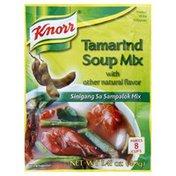 Knorr Soup Tamarind