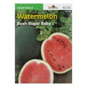Burpee Seeds, Watermelon, Bush Sugar Baby
