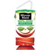 Minute Maid Apple Juice Carton